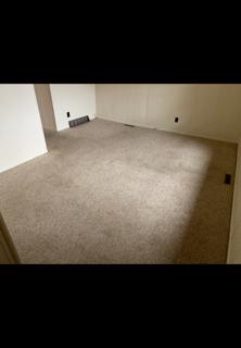 Carpet pic #5.png