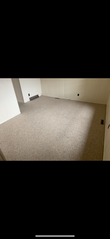 carpet pic #1.png