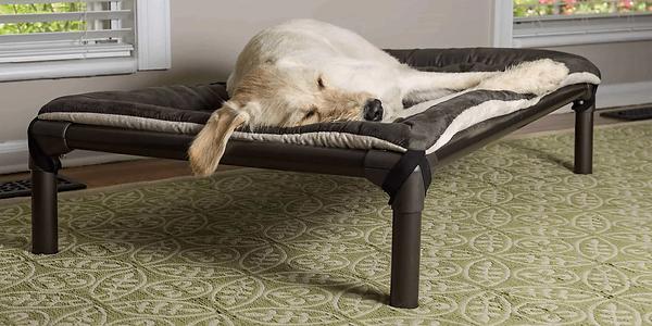 kuranda-dog-beds-front_1_1.webp