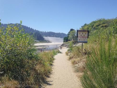 Path-to-Neskowin-Beach.jpg
