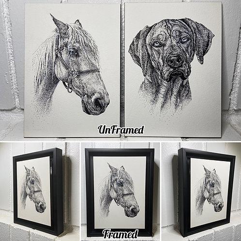 Pen Sketches/Black & White Portraits
