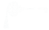 Transparent WHITE Key.png