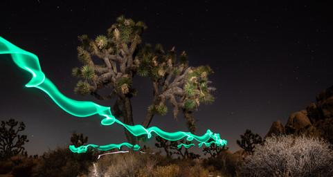Ghostly Light at Joshua Tree