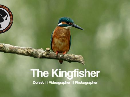 TWWS Ep07 || The Kingfisher