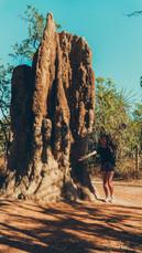 Chloe and termites