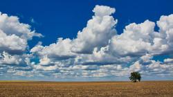 Cloud Study 7