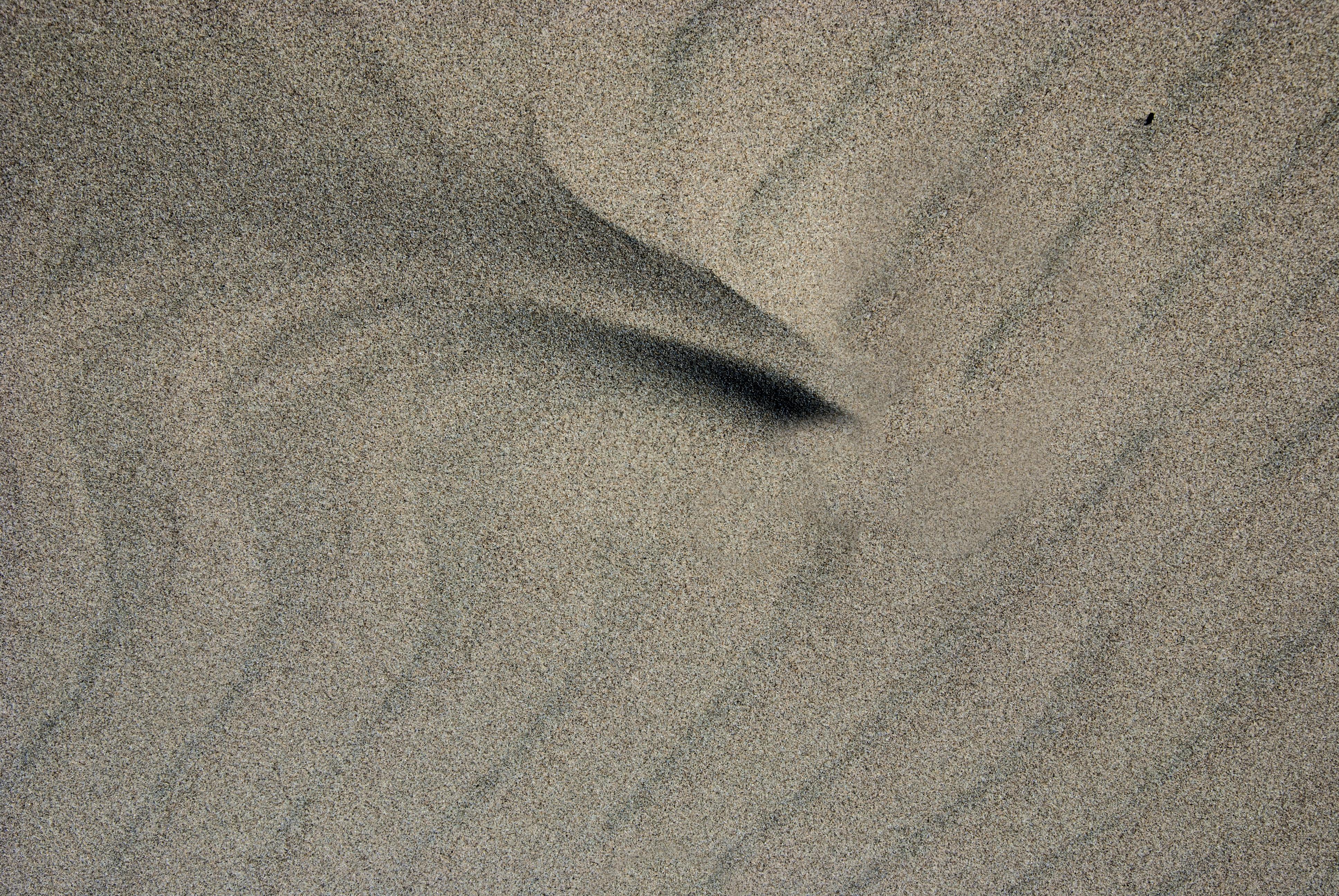 Wind-Drawn
