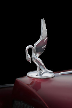 Packard Cormorant