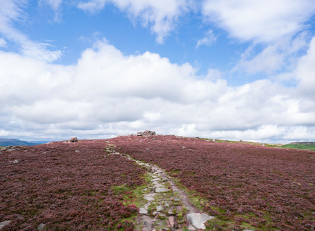 TOP PLACES to See Heather in the Peak District