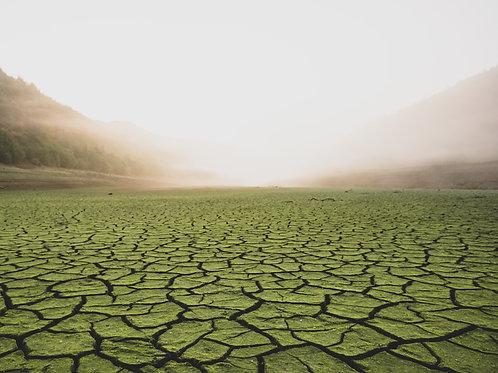 Ladybower Desert