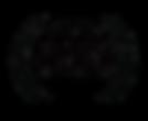 2020 Official selection laurels black tr