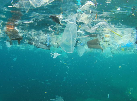 5 Tips to Reduce Plastic Waste in 2019 for #plasticfreejuly