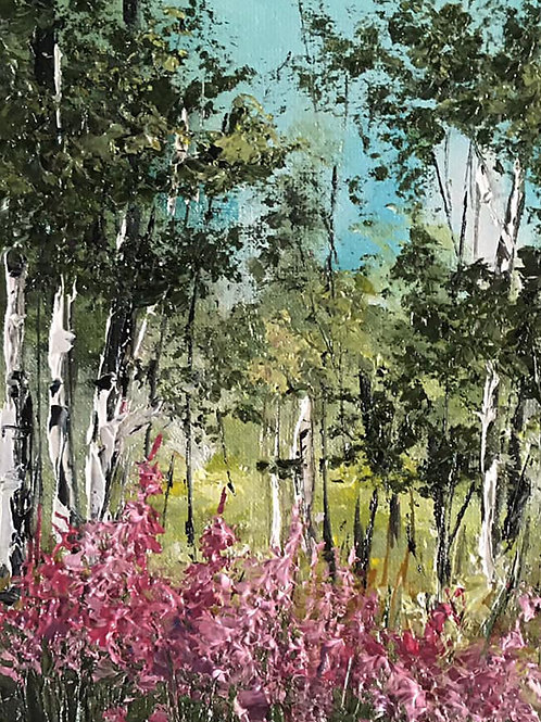 Birch Trees and Heather