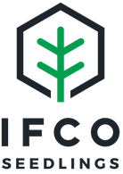 ifco_logo.png
