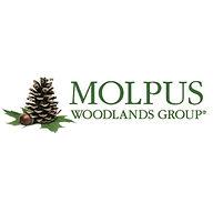 Molpus Square.jpg