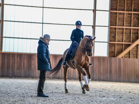 Equineo - Entraînement avec Jan Bemelmans
