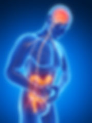 TDAH y intestino