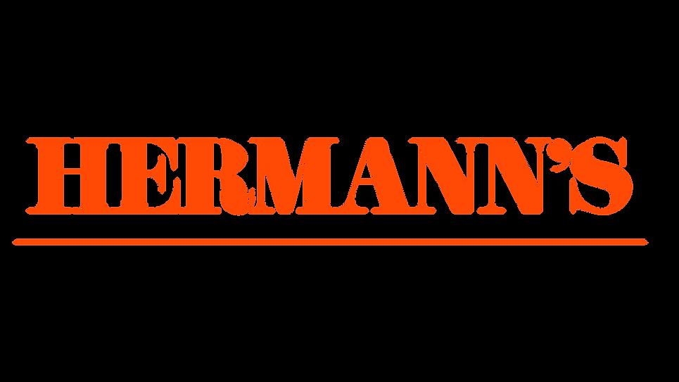 WEBTYPE_Hermann4.png