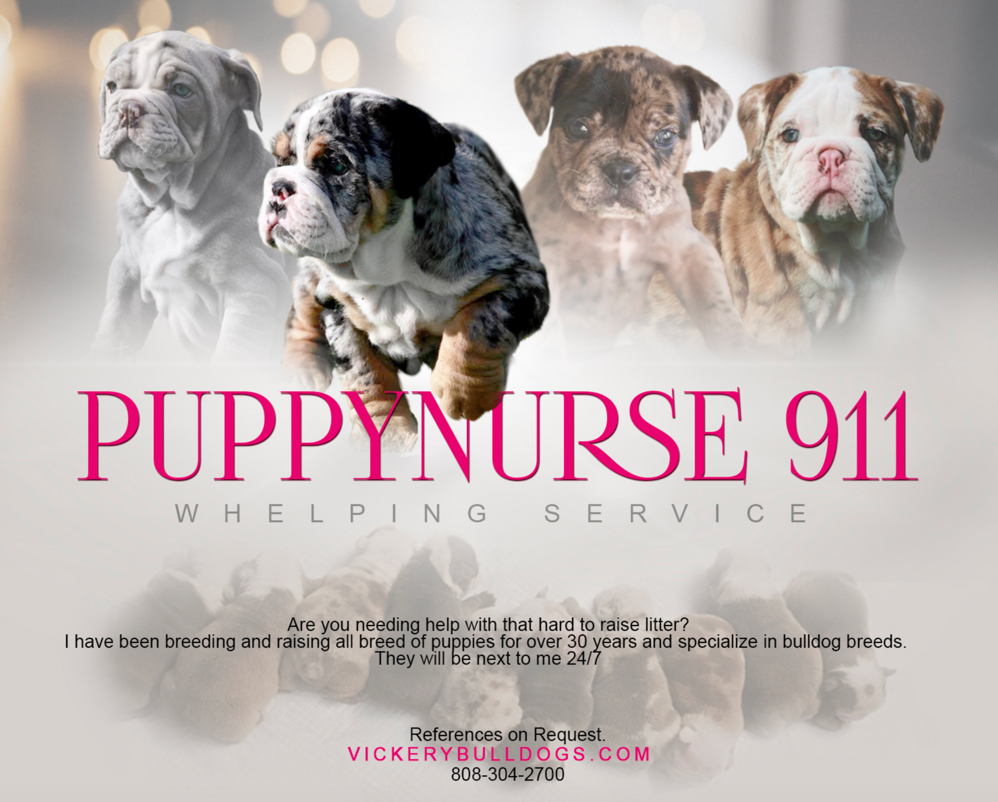 Puppy Whelping Care
