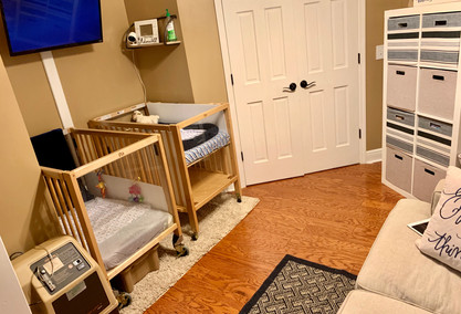 Puppy Nursery Connected to My Bedroom