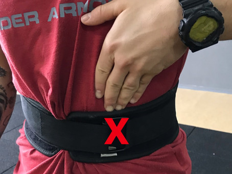 There is no reason to use the lifting belt when working your biceps