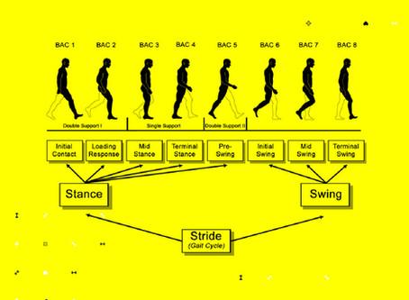 Cat de complex poate fi un lucru simplu ca mersul pe jos?
