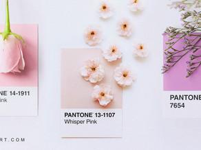 Você conhece o real poder de uma paleta de cores?