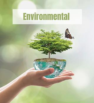 environmental statistics.png