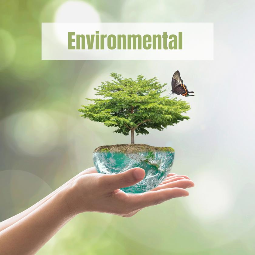 Worldwide Environmental Data