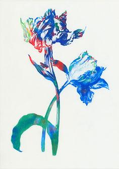 Tulip I 08_18_ulrikebultmann_VGBild-Kuns