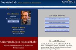 Classic FountainLab Website