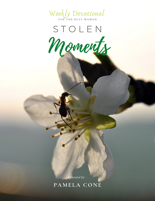 Stolen Moments Book Cover .png
