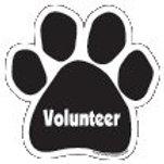 Volunteer Black  Paw Print Magnet