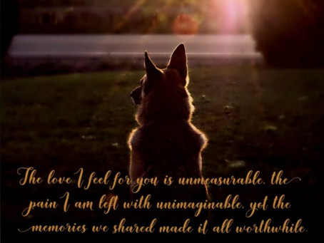 Coping With The Loss Of Your Dog