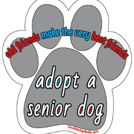 Adopt a Senior Dog - Old Friends Make the Very Best Friends paw magnet