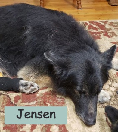 And a pooped Jensen