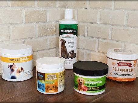 Five Supplements That Benefit Our Senior German Shepherds