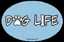 Dog Life oval magnet