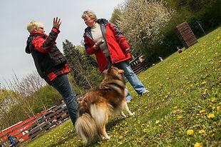 0035Morl Hundeplatz 01. Mai 2016.jpg