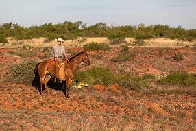 York Ranch.jpg