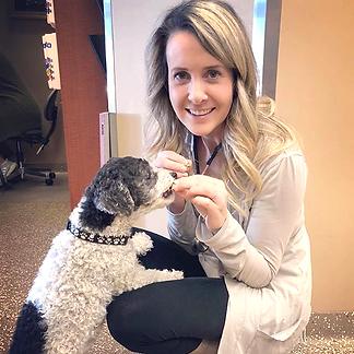 Calgary Veterinary Animal Clinic
