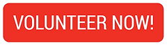 Volunteer Now Button-01.png
