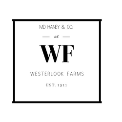 MD Haney Westerlook Logo