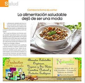 Revista Surdatos 2017.png