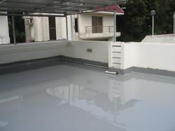 Residential PU Roof Waterproofing