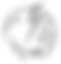 APEX_CARD_LOGO_1.png