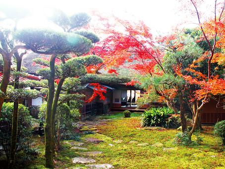 [九州]  九年庵賞紅葉