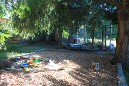 Sand Box, Tree Cover, Chickens!
