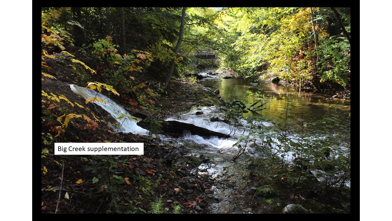 Big Creek.png