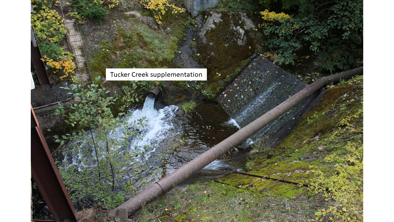 Tucker Creek.png